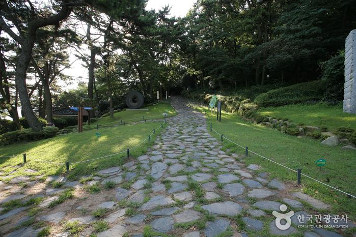 Amnam Park (부산 암남공원)