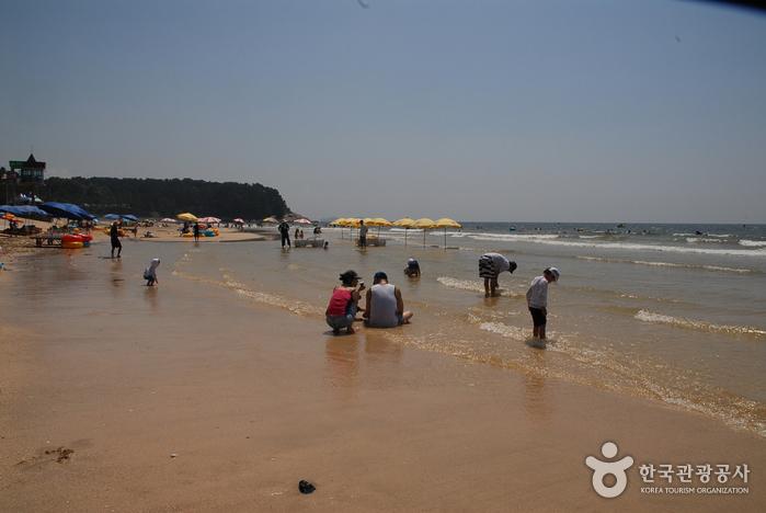 Пляж Тэчхон (대천해수욕장)10
