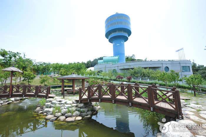 Geumgang Estuary Bird Sanctuary (금강철새조망대)