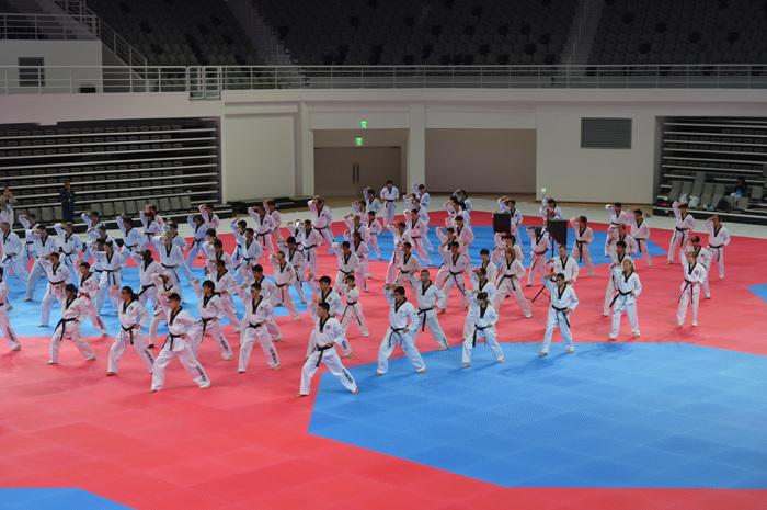 国立跆拳道院국립태권도원