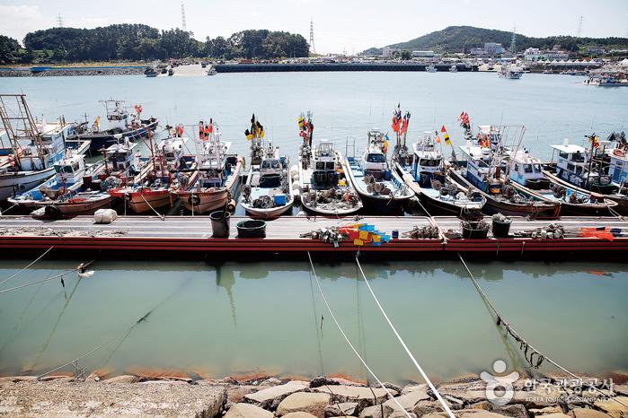 바닷바람을 자장가 삼아 졸고 있는 홍원항의 고깃배들