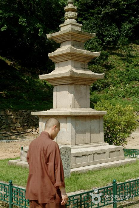 Daeheungsa Temple [UNESCO World Heritage] (대흥사[유네스코 세계문화유산])