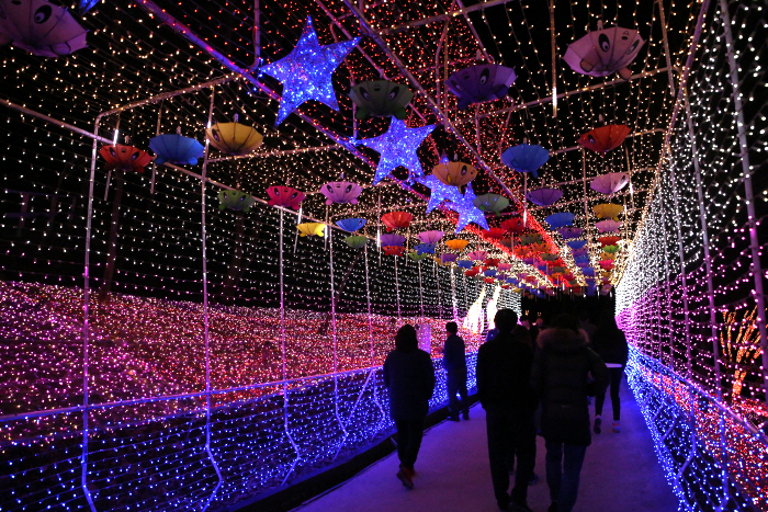 Cheongdo Provence Lichterfest im Sternenlichter-Märchendorf (청도프로방스 별빛동화마을 빛축제)