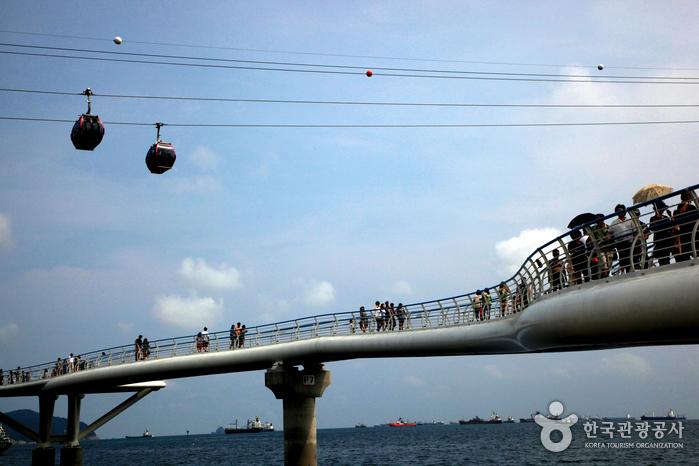 내가 원하는 바다, 거기 다 있었네. 부산 송도해상케이블카 사진