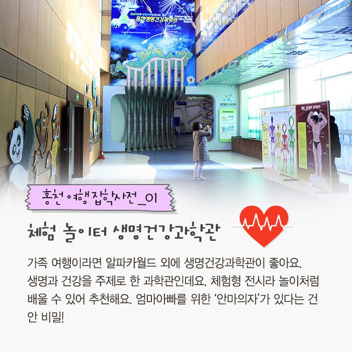홍천 여행 잡학사전 01: 체험 놀이터 생명건강과학관