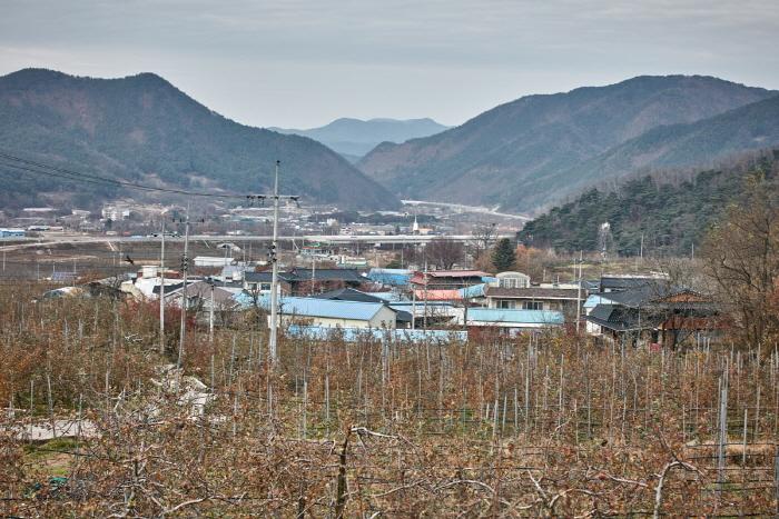 군위 팔공산능금마을