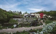 Godowon Healing Center (깊은산속 옹달샘)