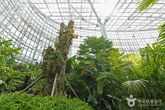 국립세종수목원