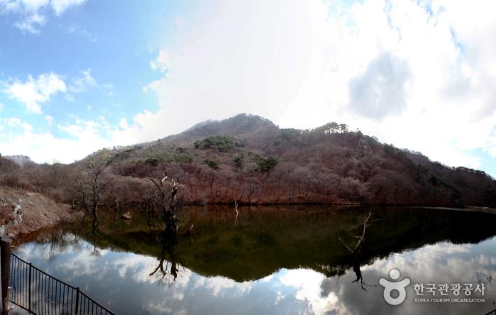Jusanji Pond (주산지)