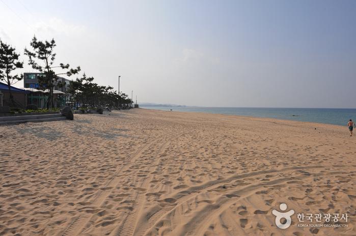 Jumunjin Beach (주문진해변)