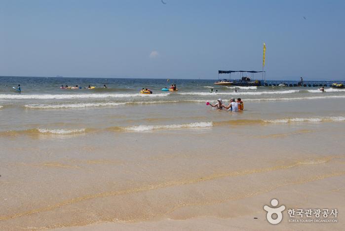 Пляж Тэчхон (대천해수욕장)9