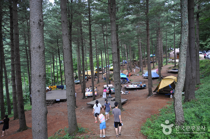 Deogyusan Recreational Forest (덕유산자연휴양림)