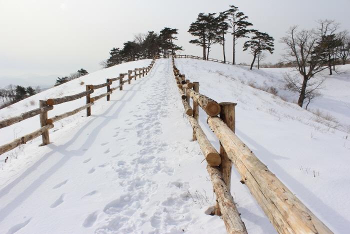 Снежная деревня в Тэгваллёне (대관령 눈꽃마을)2
