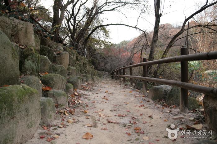 [북한산 둘레길] 1 소나무숲길