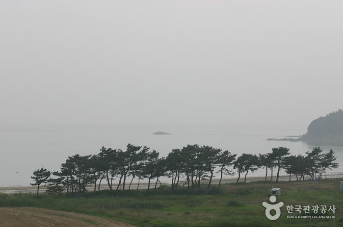 장삼포해수욕장