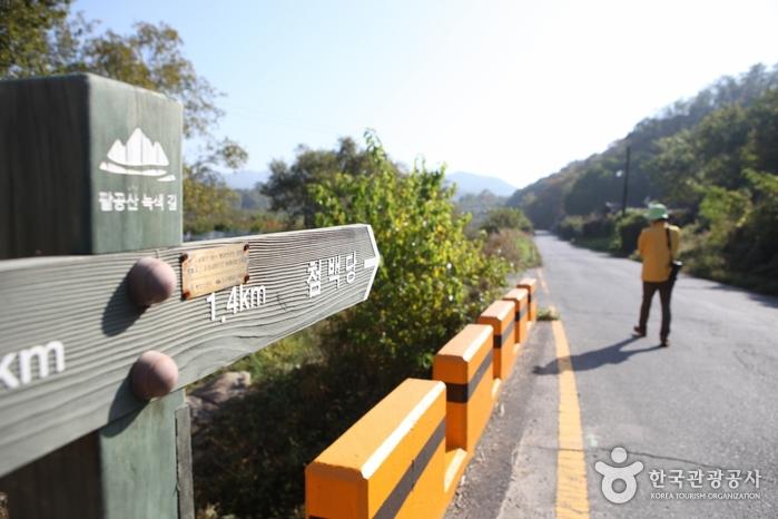 [대구올레 팔공산 4코스] 평광동 왕건길