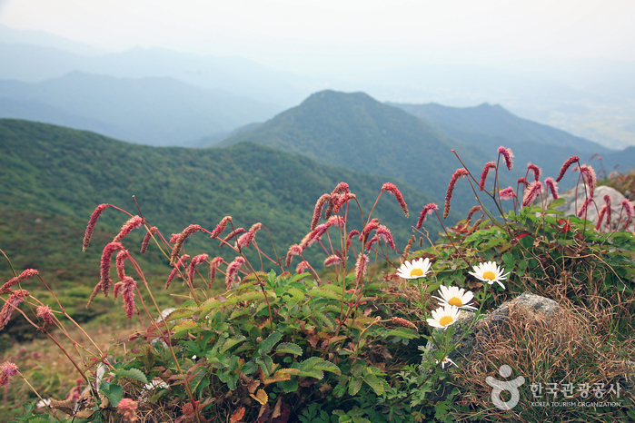 Deogyusan Mountain National Park (Namdeogyu) (덕유산국립공원(남덕유분소))