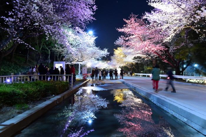 렛츠런파크 서울 야간벚꽃축제 2017