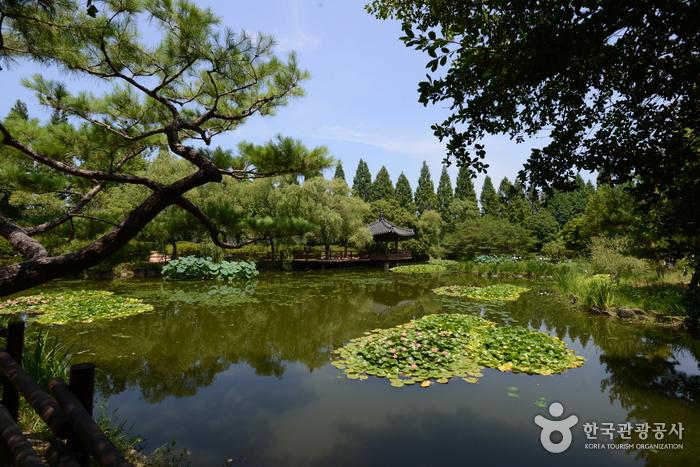 수생식물원