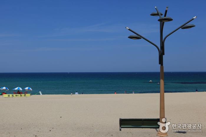 Strand Anmok (안목해변)