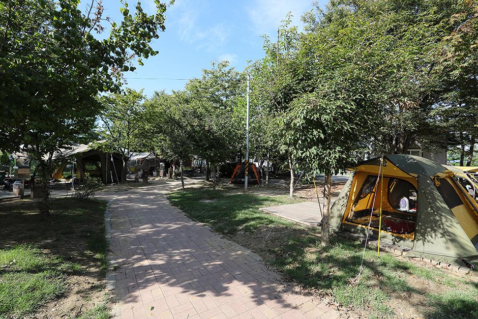 문암생태공원캠핑장