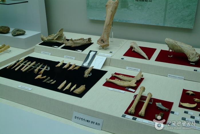 Archaeological Site in Seokjang-ri, Gongju (공주 석장리 유적)