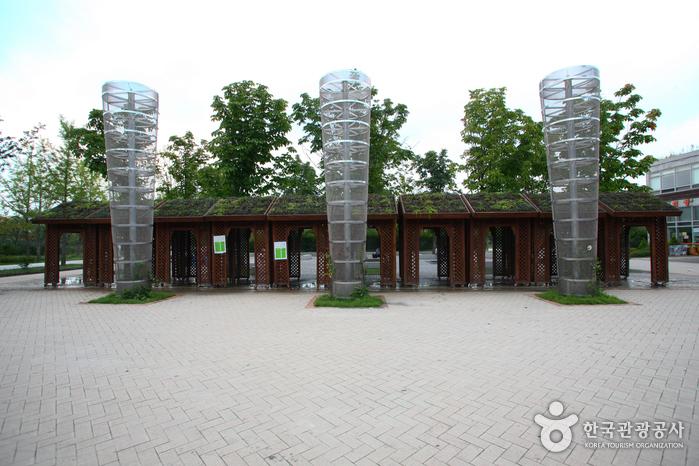 Seoul Forest (서울숲)