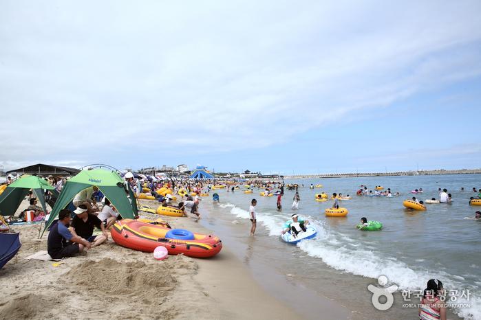 Goraebul Beach (고래불해수욕장)