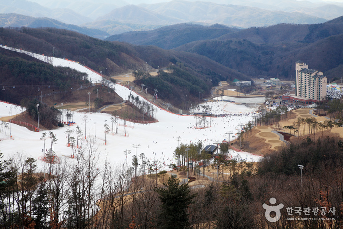 Station de ski Oak Valley (오크밸리 스키장)