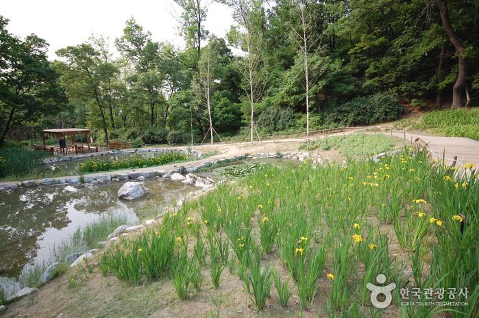 관악산 생태공원
