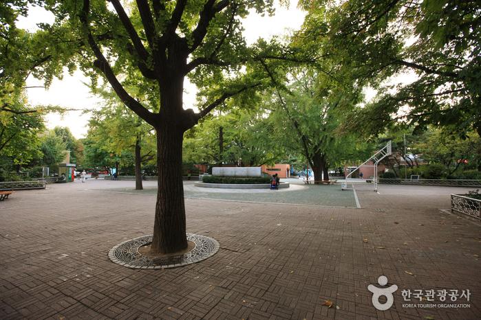 Marronnier Park (마로니에공원)