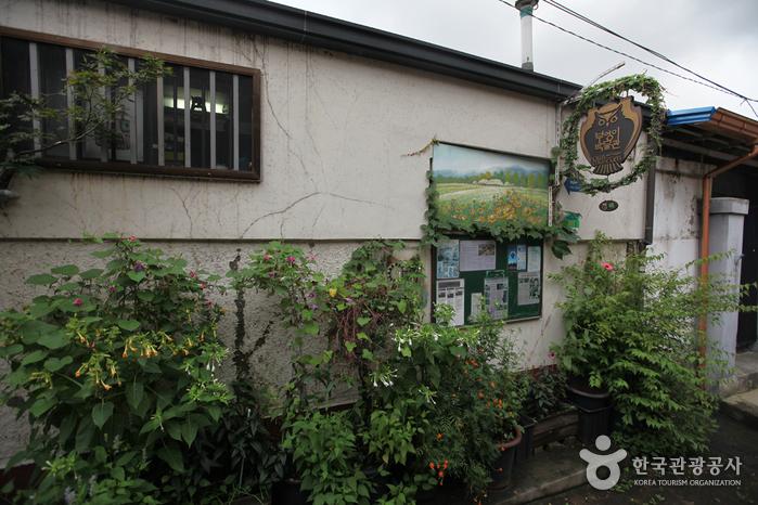 Музей сов (부엉이박물관)2