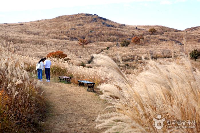 가을에는 억새로, 봄에는 철쭉으로 유명한 황매산
