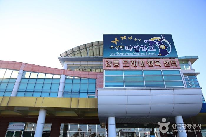 요즈음 강릉 인기 명소로 떠오른 수상한 마법학교