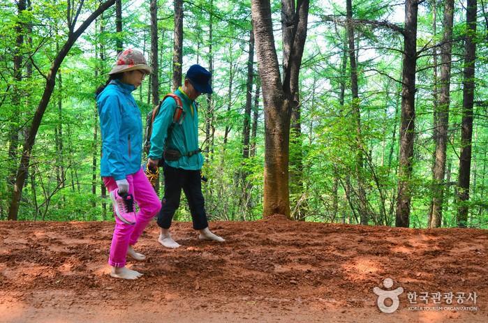붉은 황토길을 맨발로 걷는 두사람