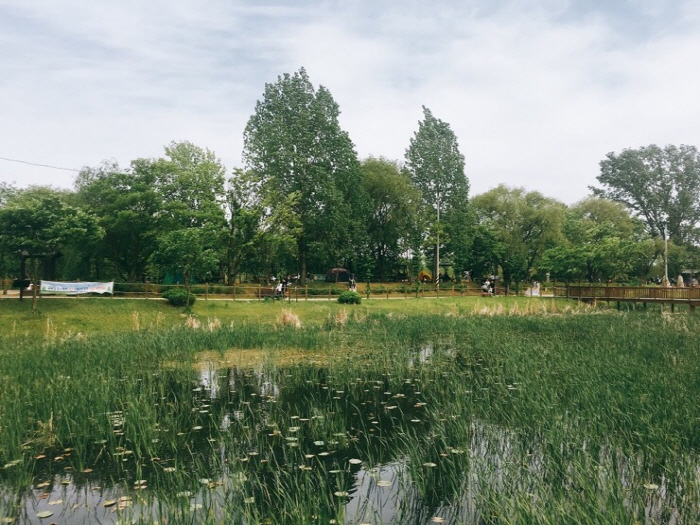 Baramsae Village Picnic Garden (바람새마을 소풍정원)