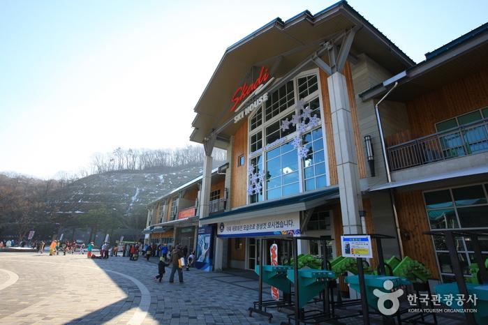 昆池岩度假村滑雪场(곤지암리조트 스키장)