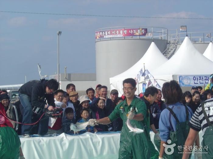 Bangeo Festival (최남단 방어축제)