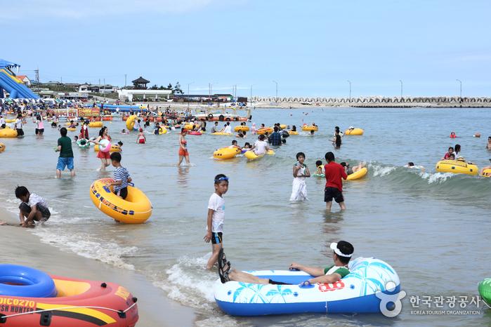 Goraebul Beach (고래불해...