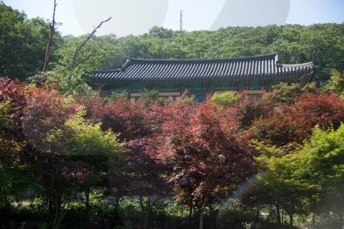 Anguksa Temple (Muju) (안국사 (무주))