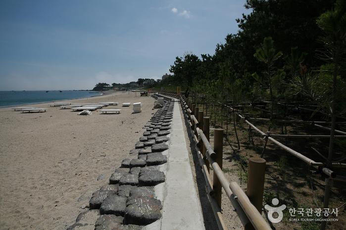 오류고아라해변