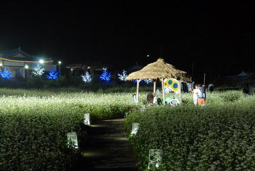 Культурный фестиваль имени писателя Ли Хё Сока в Пхёнчхане (평창효석문화제)42