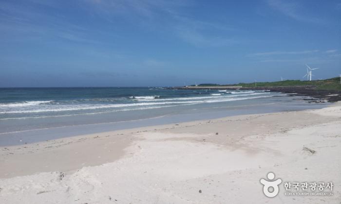 월정리해변(월정리해수욕장)