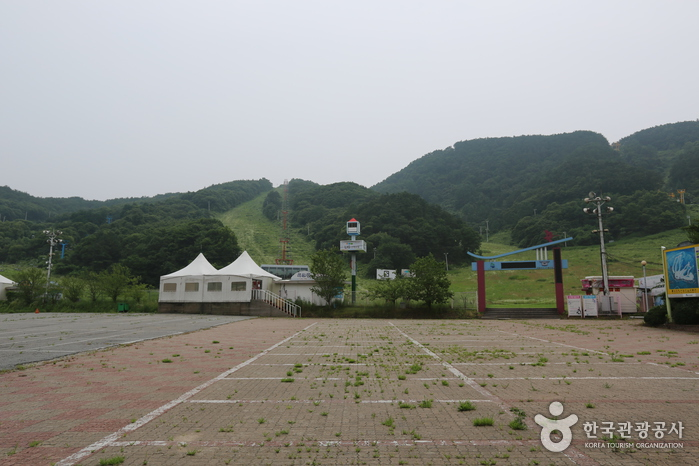 Eagle Valley Ski Resort Sledding Hill (Formerly Sajo Resort Sledding Hills) (이글벨리스키리조트 눈썰매장 (구. 사조리조트 눈썰매장))