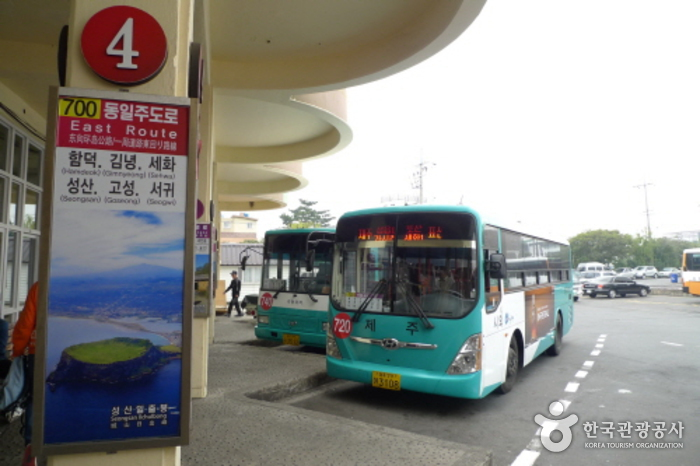Jeju Intercity Bus Terminal (제주시외버스터미널)