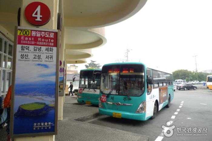 济州市外巴士客运站(제주시외버스터미널)