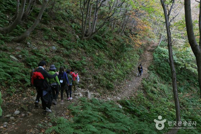 Berg Seonginbong (성인봉)