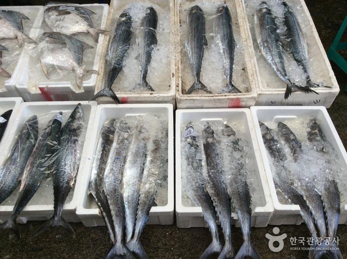 麗水中央鮮魚市場(여수중앙선어시장)