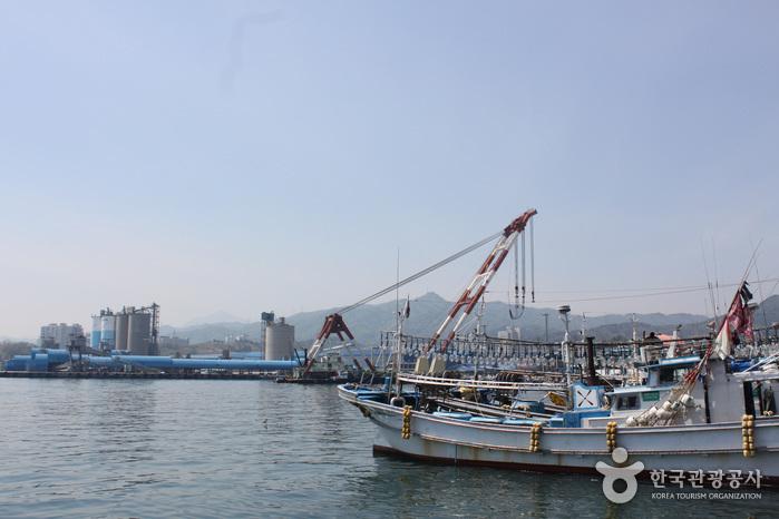 Puerto Mukho (묵호항)4