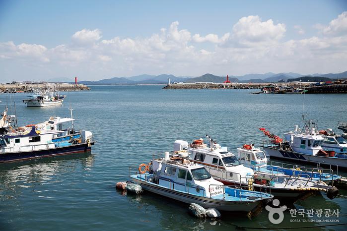 한적한 홍원항 풍경